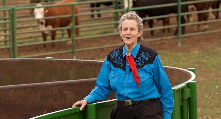 """Temple Grandin: """"Reikia kitokių mokslininkų"""""""