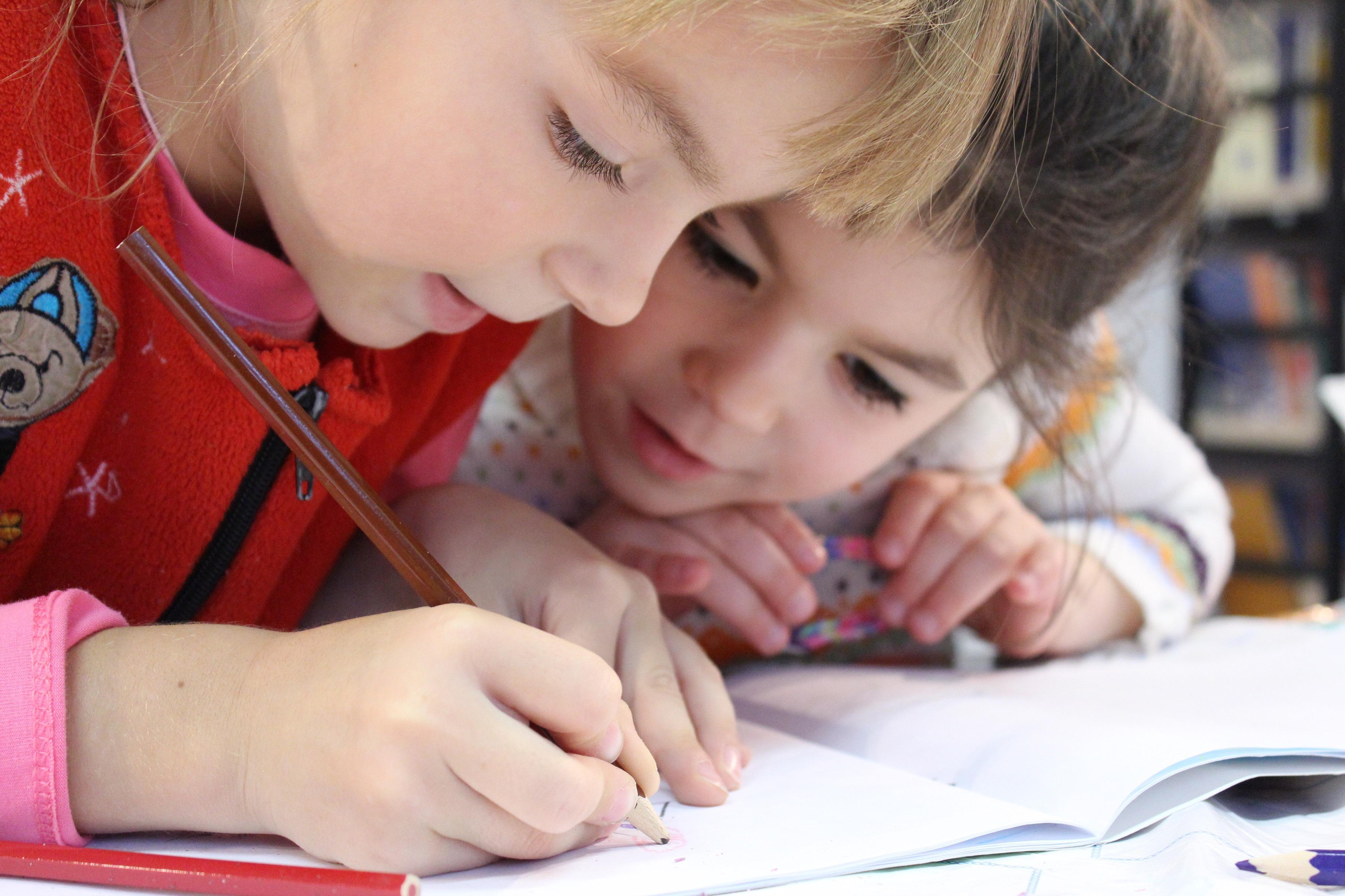 """Rekomendacijos Švietimo ministerijai """"Dėl vaikų turinčių įvairiapusių raidos sutrikimų ugdymo"""""""